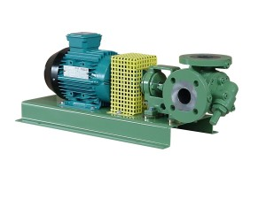 Gear pump with mechanical seal and electric motor drive